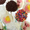 How to Create a Bunny and Chick Cookie Easter Basket