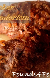 Slow Cooker - Easy Pork Tenderloin Recipe
