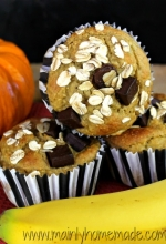 Gluten Free Chocolate Chip Pumpkin Blender Muffins Recipe