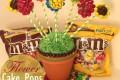 Flower-Cake-Pops-1022x1024