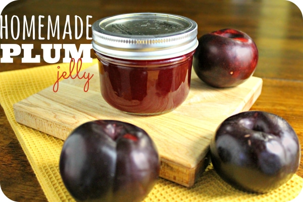 How-to-make-Homemade-Jelly-Plum