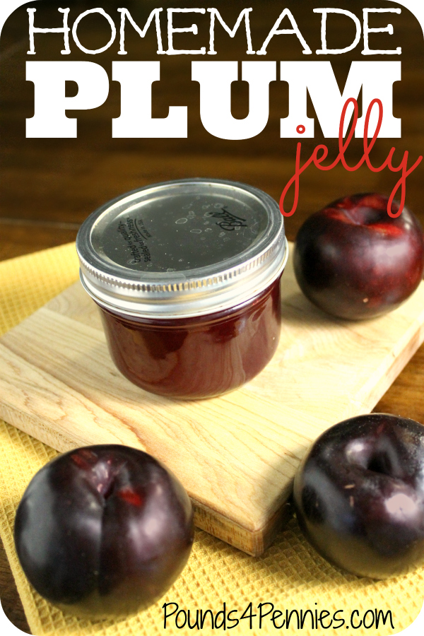 How-to-make-homemade-jelly1