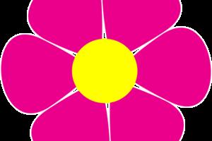 daisy-flower-clip-art-aiej9gKi4