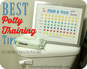 Best Potty Training Tips Using Flushable Wipes! FREE Potty Training Printable